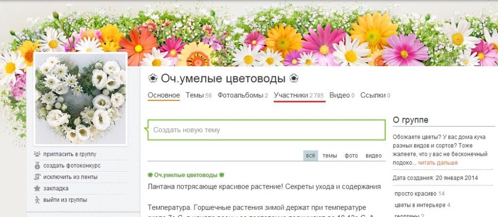 Зарабатываем на группе в Одноклассниках: Сервис Viboom.ru (Вибум)