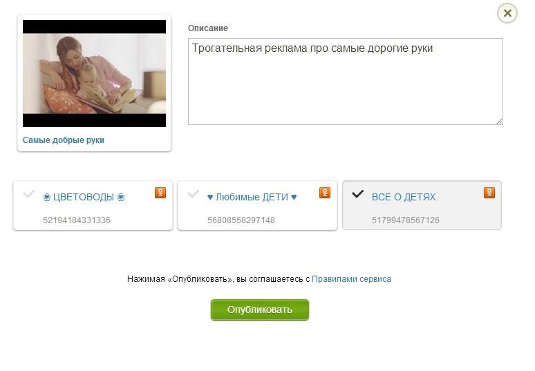 Seedr.ru – еще один видеосервис для вашего заработка