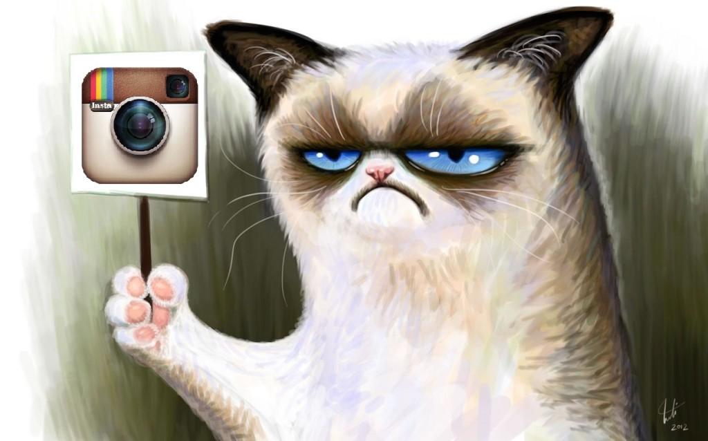 Массфолловинг в Instagram